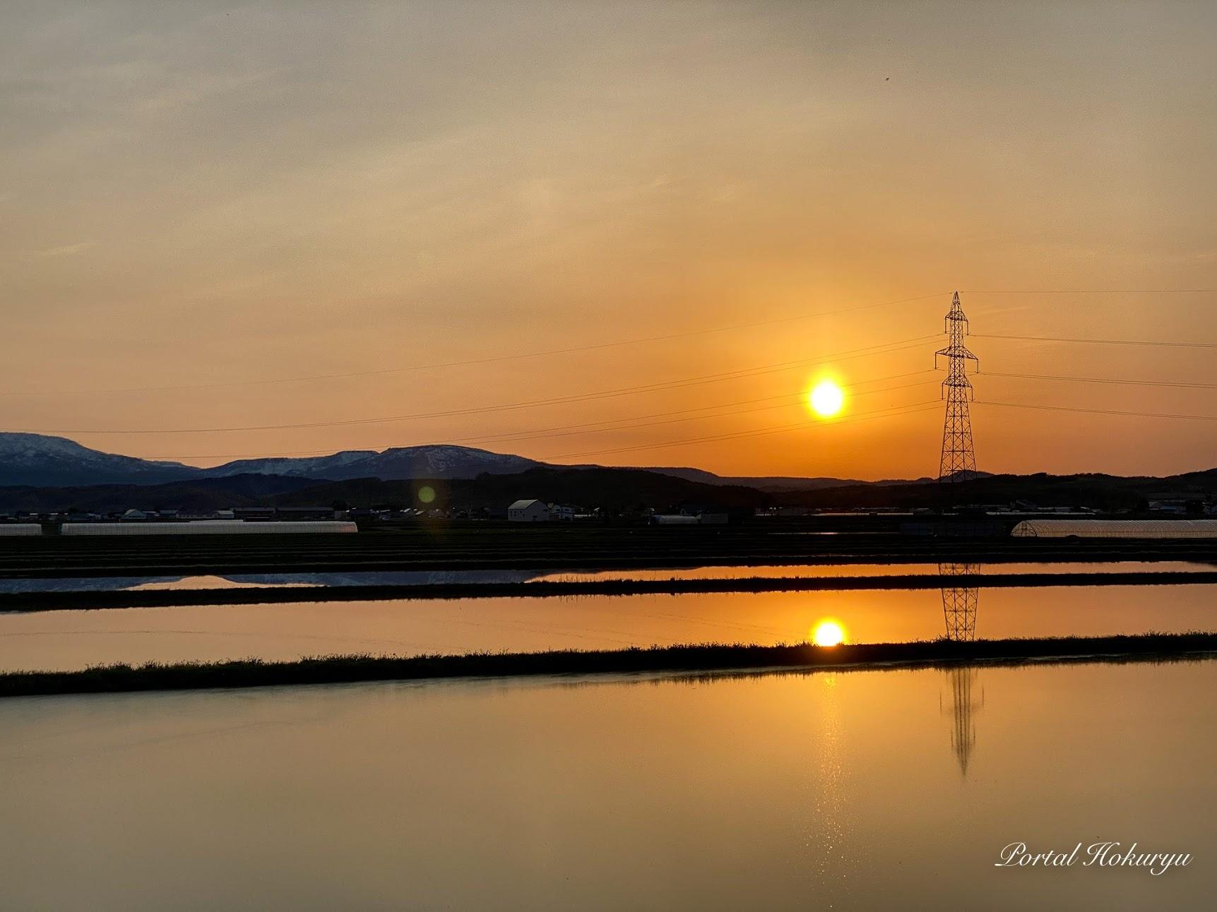 水田に映り込む夕陽