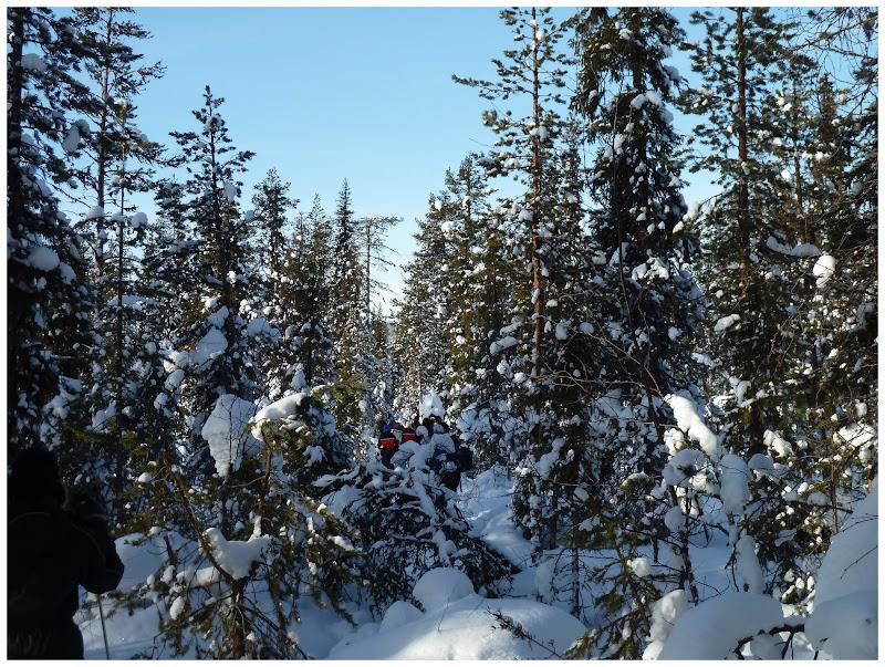 Promenade en terres same (frontière suédo-finlandaise) - Page 3 ACtC-3ejd2bMq1-trS2QY08-dibAEypIIlXgMFqXJXzhe5LWKcBrdUx50ruDAF7i_NNyfHTCT-XEsSDNAzg9Kc6zEHzpx3oi9jConTyjYzMPyVVNftaXbQjNes_unVT3b0dV3q7OYI5atmeA8KFCOzJrm8pH=w800-h603-no