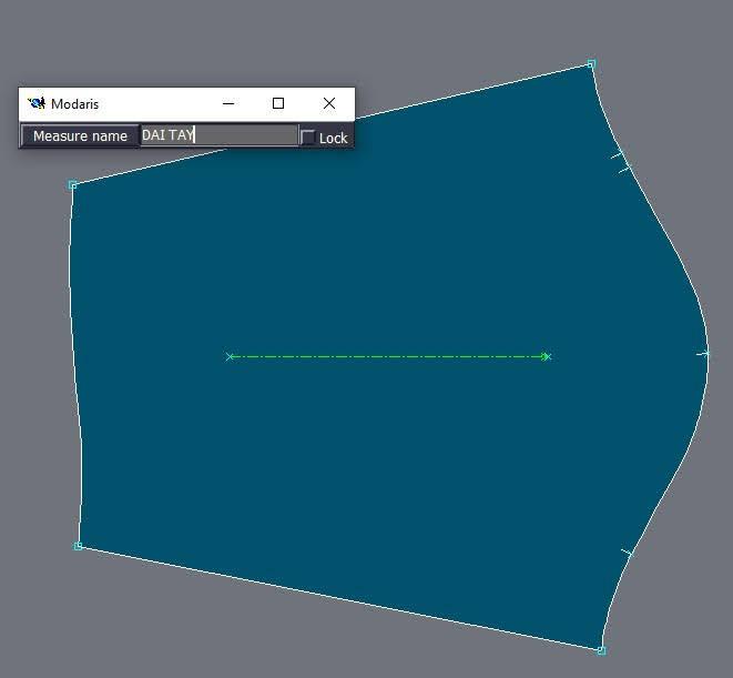 Lectra Modaris Measurement Charts Manager: Cách Thêm Hình Minh Họa Trong Bảng Đo Thông Số 7