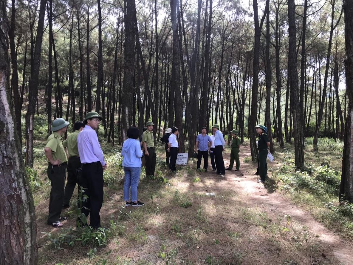 Đoàn kiểm tra UBND tỉnh kiểm tra công tác PCCC rừng tại huyện Nghi Lộc