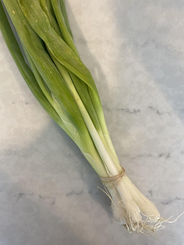 Green Onions (per Bunch)