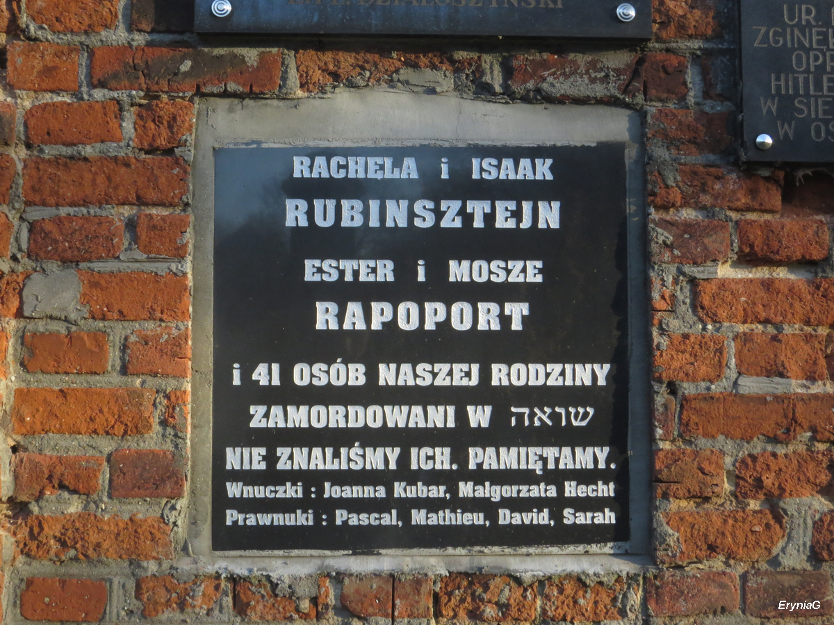 cmentarz żydowski wŁodzi