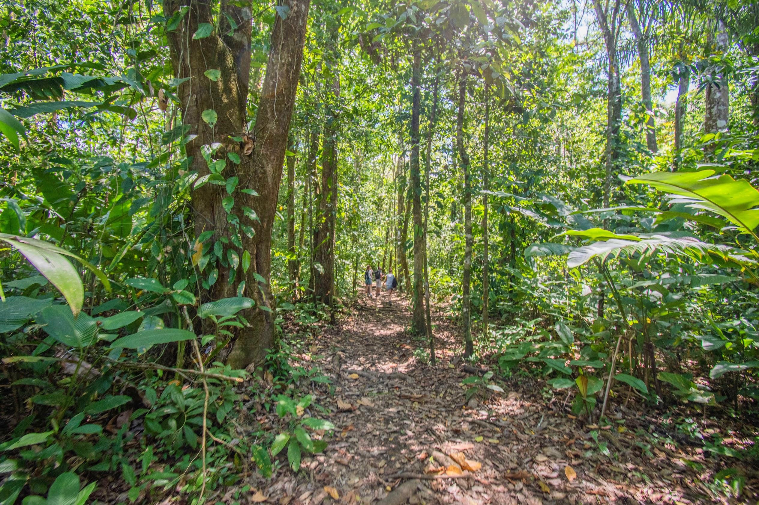 natuurparken-costa-rica