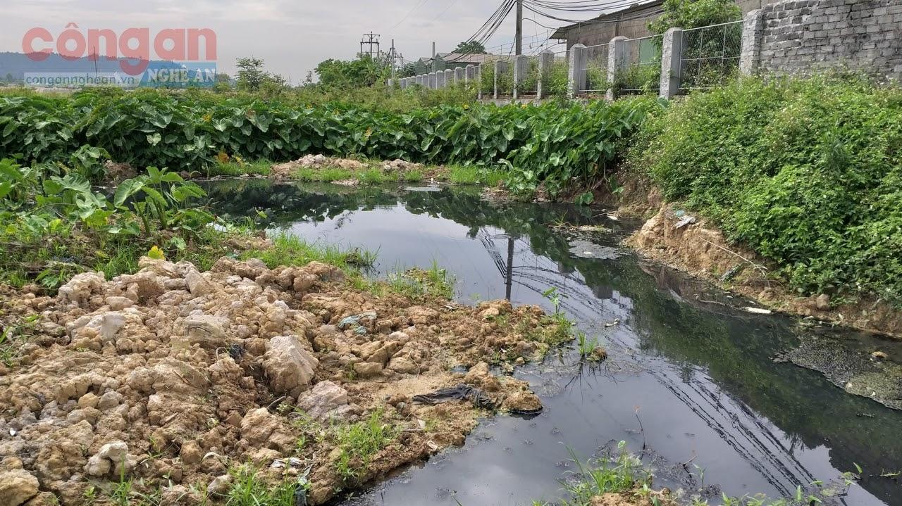 Chi nhánh Công ty TNHH Em-Tech Việt Nam tại phường Vinh Tân, TP Vinh bị lực lượng             chức năng xử phạt 185,4 triệu đồng vì xả thải chưa qua xử lý ra môi trường