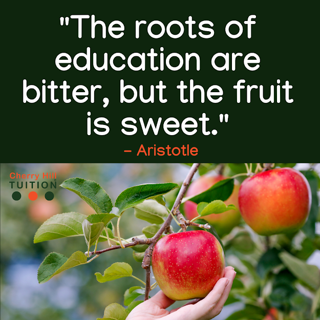 The roots of education are bitter, but the fruit is sweet. - Aristotle. Education is the key to success.
