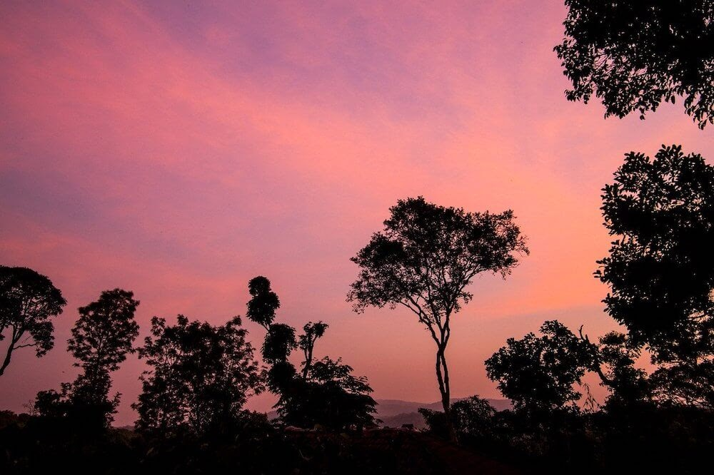 purple sunset as seen from a hotel in coorg.jpg
