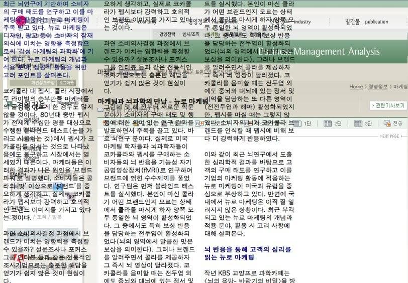 파이어폭스로 보는 LG경제연구원 웹페이지
