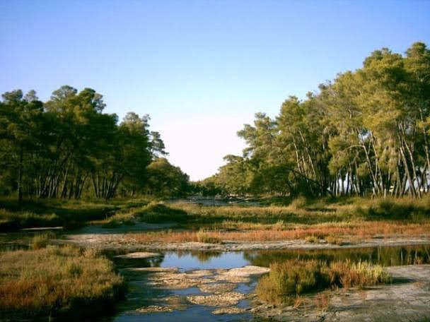 Karavasta Lagoon & Divjaka National Park