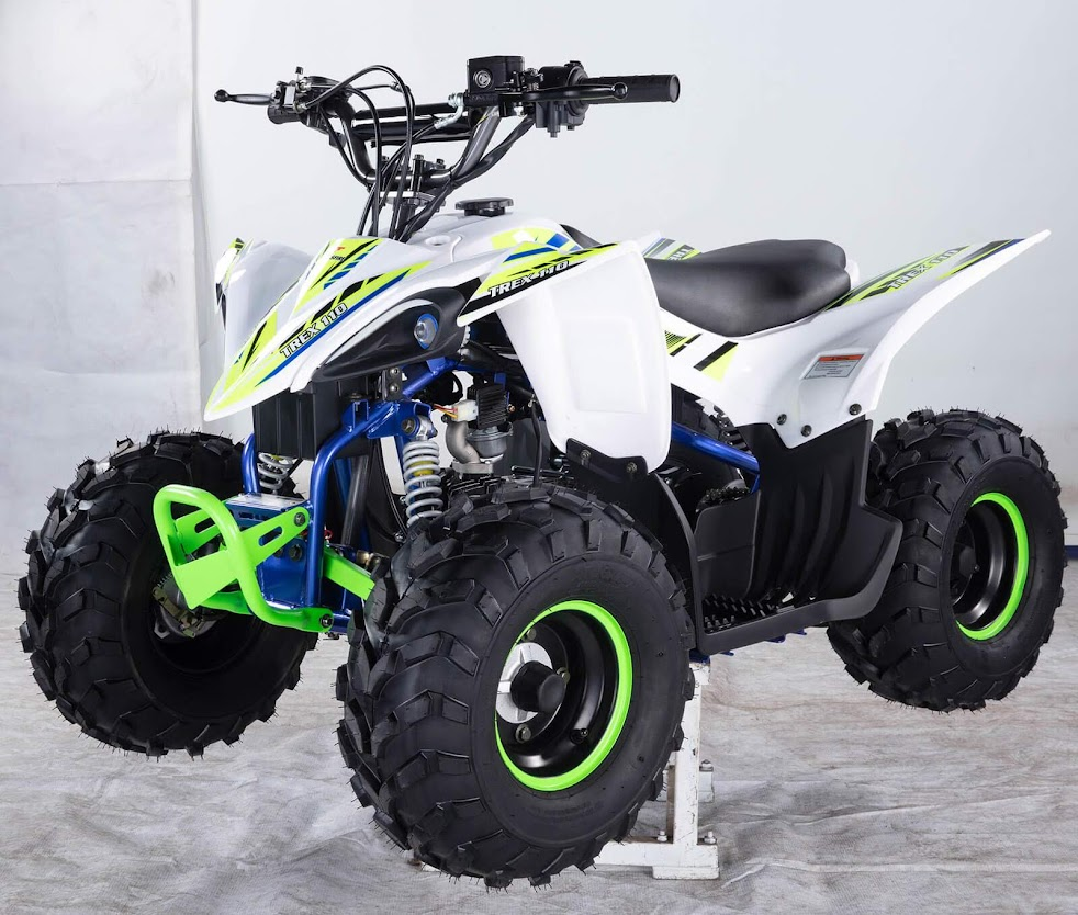 110cc TREX Junior Kids Mini Quad Bike T Rex ATV