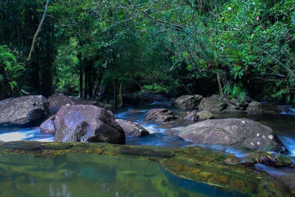 Pandola Natural Pool