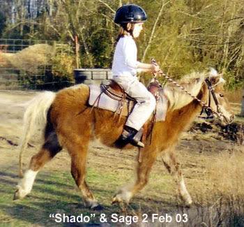 Sage riding Shado