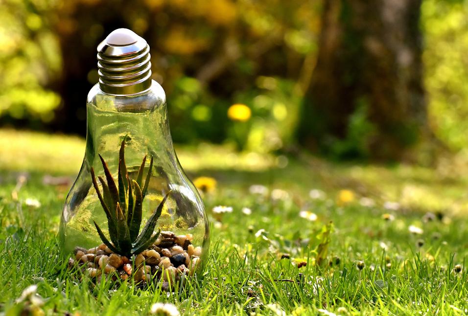 Il bando LIFE 2020 per progetti in tema di ambiente e clima