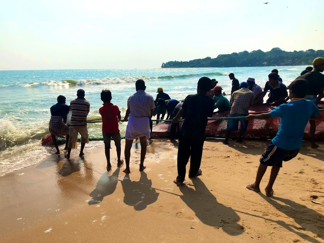 See and help the fishermen