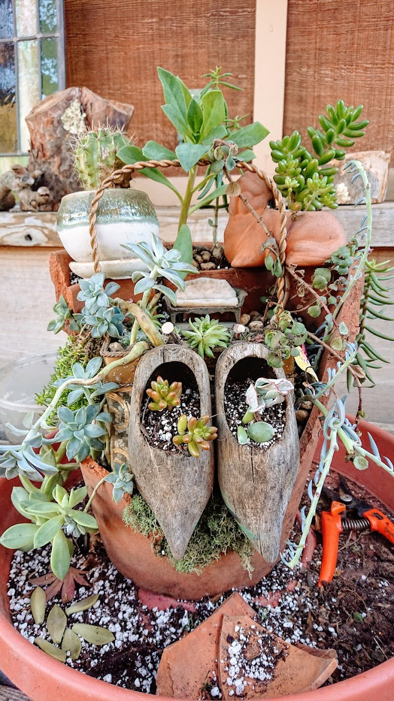 First draft of fairy garden composition using broken terracotta pieces.
