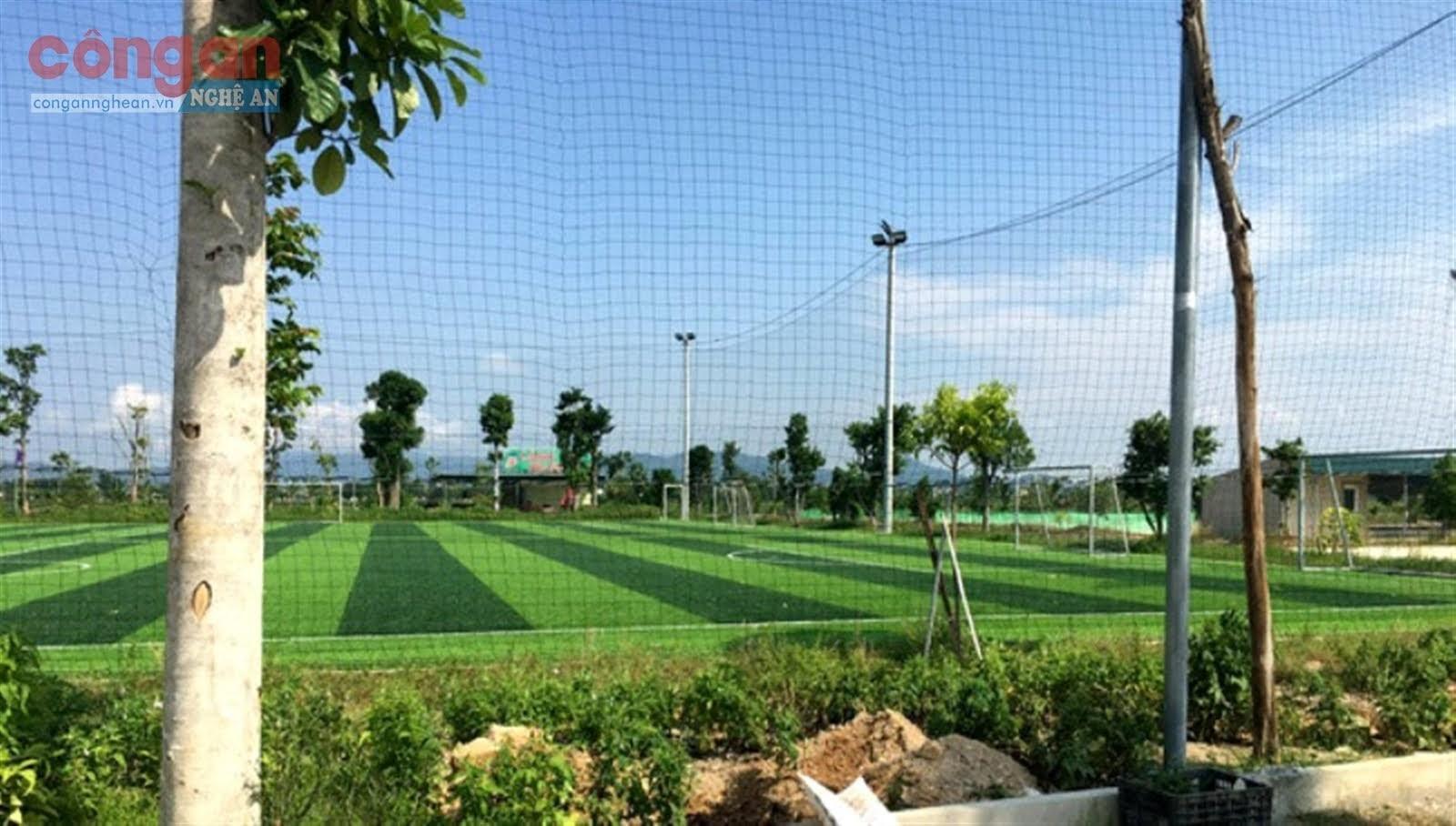 Sân cỏ nhân tạo nằm trong Dự án nuôi cá rô phi Isreal           công nghệ cao