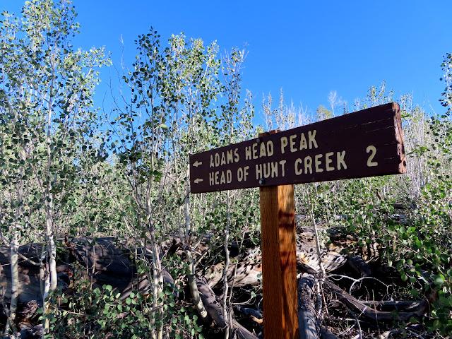 Start of the Adams Head trail