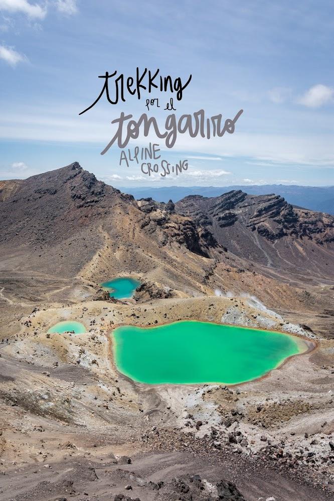 trekking tongariro alpine crossing