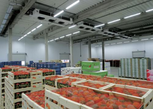 kho lạnh bảo quản trái cây nhập khẩu