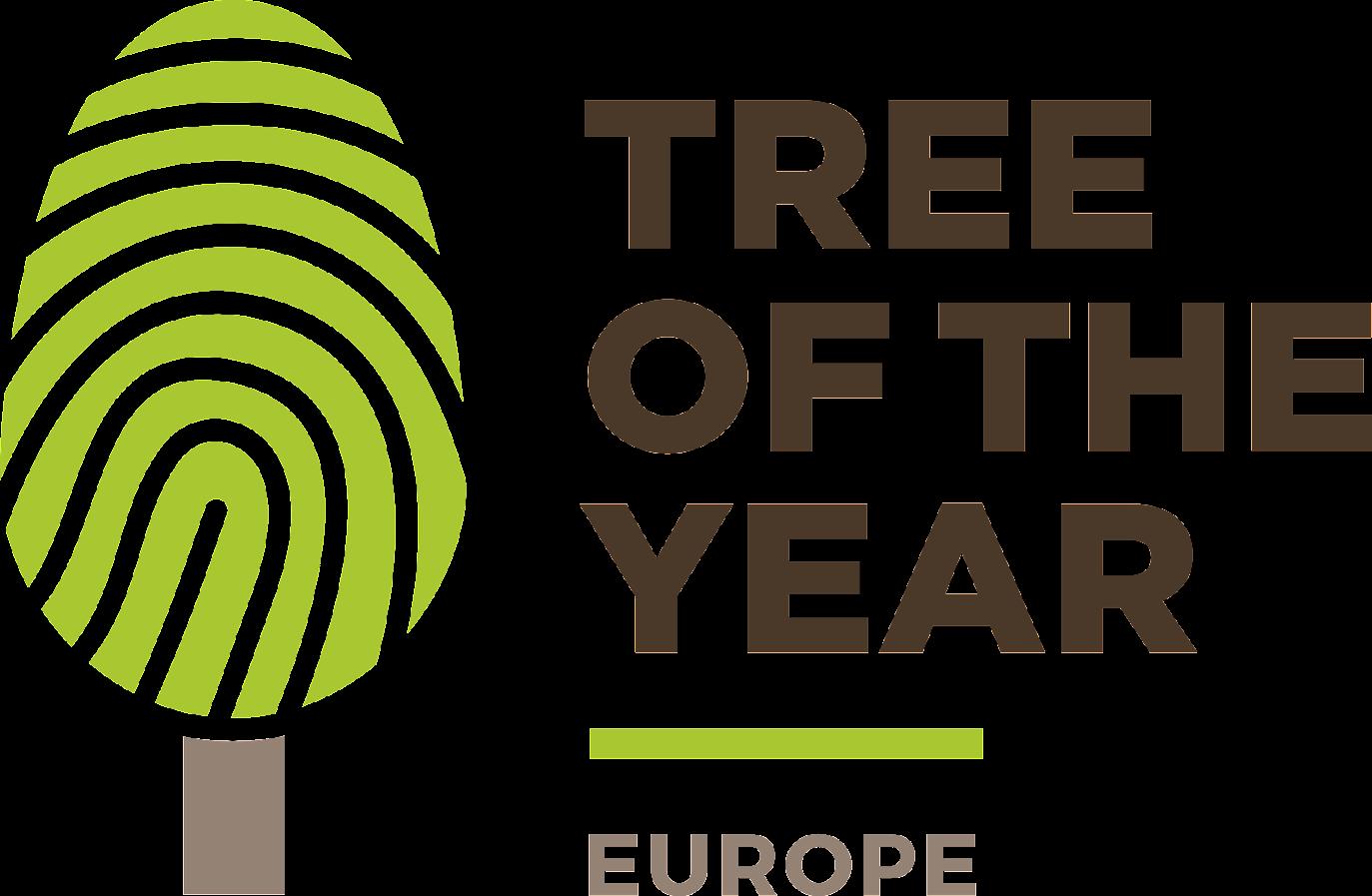 Európsky strom roka