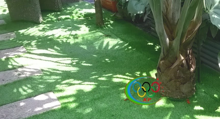 Cỏ nhân tạo sân vườn và cỏ natuture (từ thiên nhiên) Cân nhắc ra sao