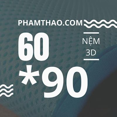 Nệm lót 3D mát kích thước 90 x 60cm cao cấp Ngọc Thảo