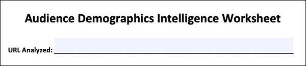 Audience Demographics Intelligence Worksheet
