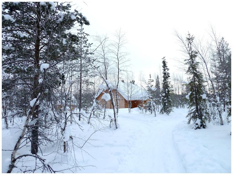 Promenade en terres same (frontière suédo-finlandaise) - Page 3 ACtC-3fEikcC9_e4qb-pqElh-suLoUr4ygkqHASNu0wG9uTz7Wg9B02ZCb-KH4jwdn-xfnhSU1fzRKrWdEkdwMg_f3S7jZIOk64oT9qLwZ_fmyBn01b2hLhNw1eVzWuMF5LYoikcTUVZEDjhhMWGfW22wkdb=w800-h603-no