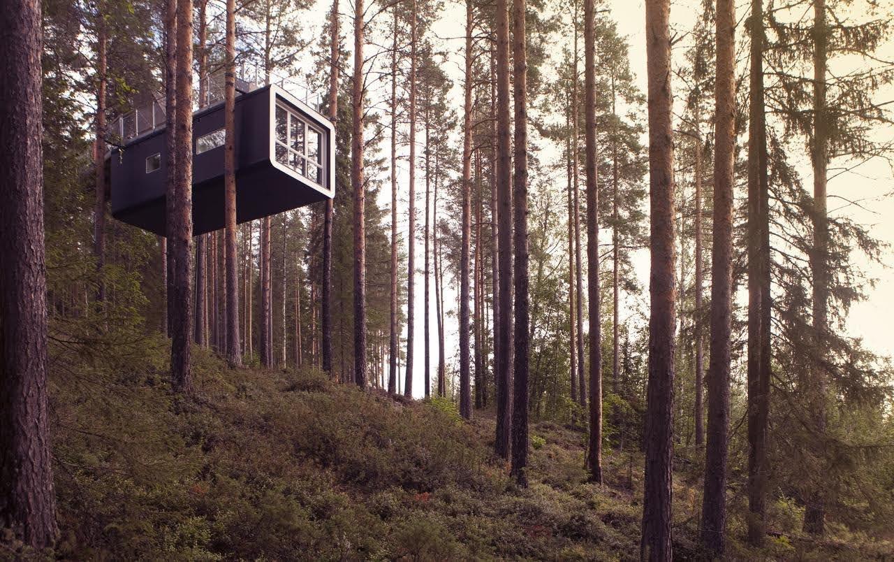 boomhut-Zweden