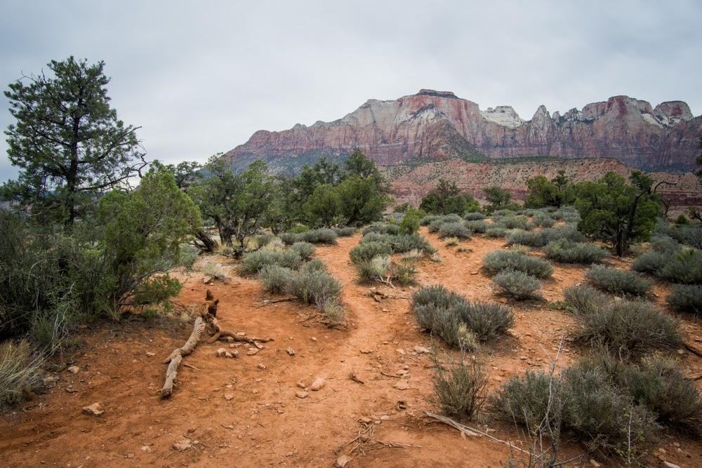 Zion Watchman Loop Trail