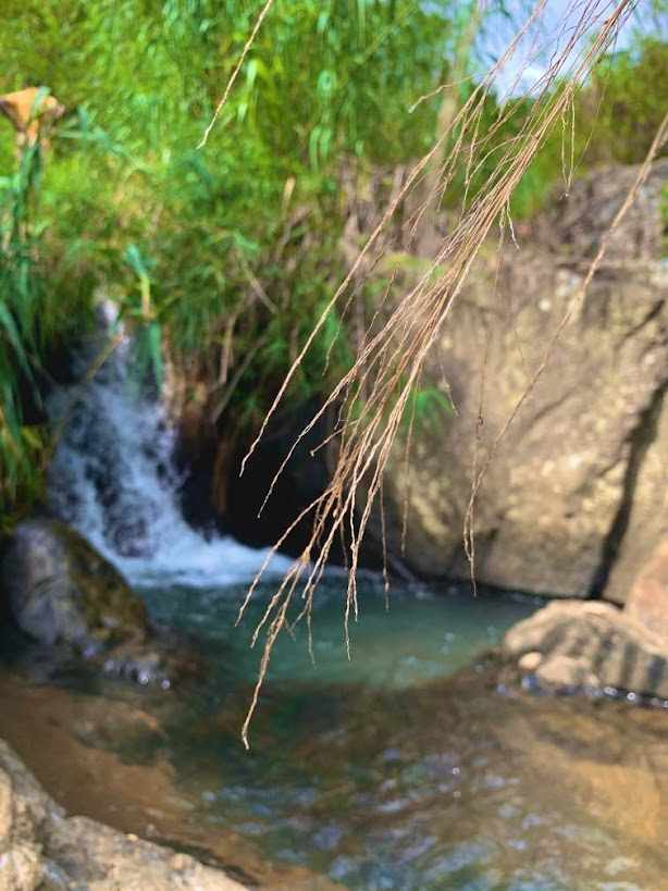 Kombukara Nature Pool