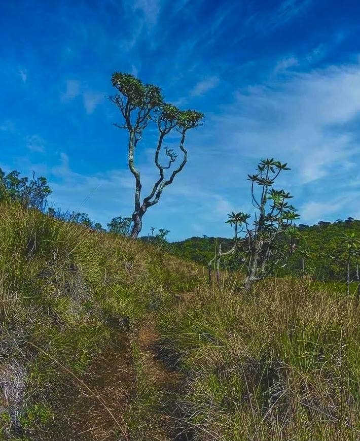 Kirigalpotha Mountain