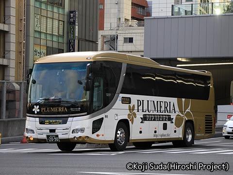 平成エンタープライズ「VIP LINER プルメリア」 2090