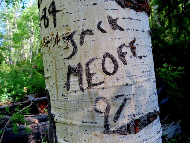 Jack Meoff '97