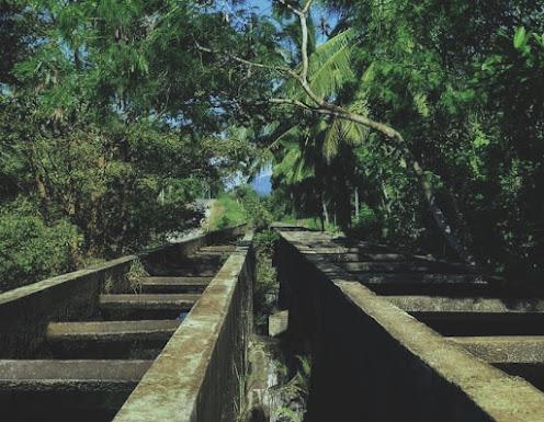 Muruthawela Ginipetti Palama