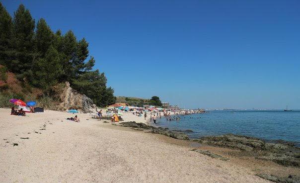 Praia_Albarquel
