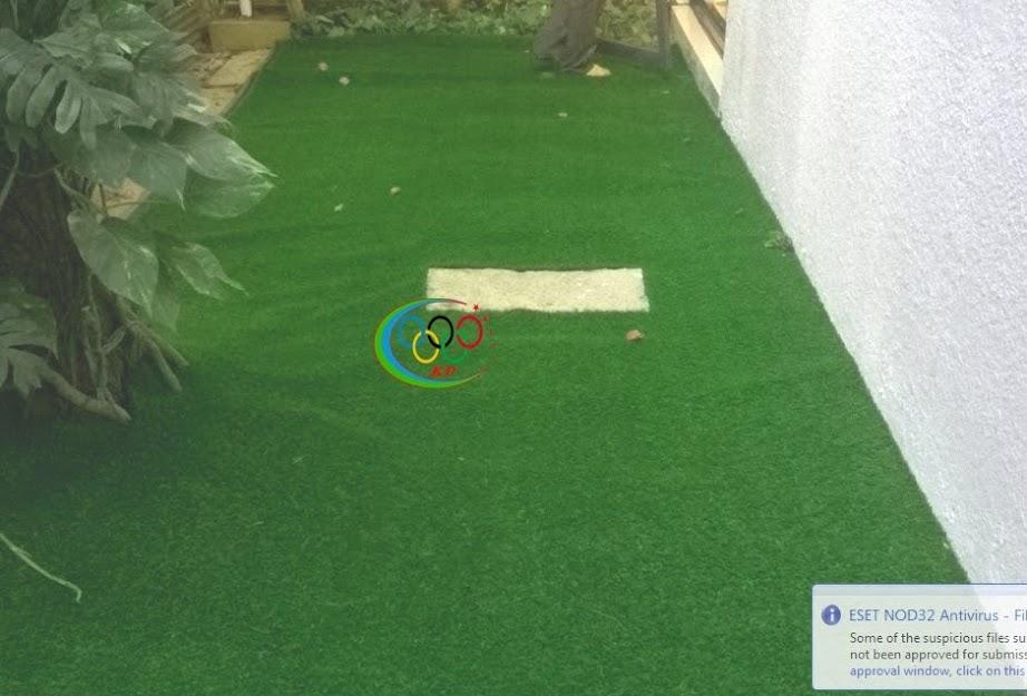 Cỏ nhân tạo sân vườn phổ thông Các mẫu  hiện tại như thế nào