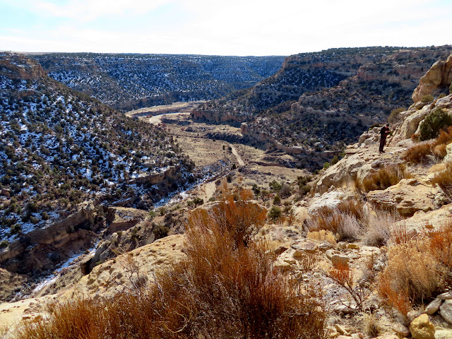 View from Shaft Ruin into Cuervo Canyon