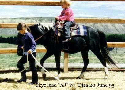 Skye leads AJ while 'Dira gets to ride
