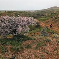 Каппадокия, апрель 2019