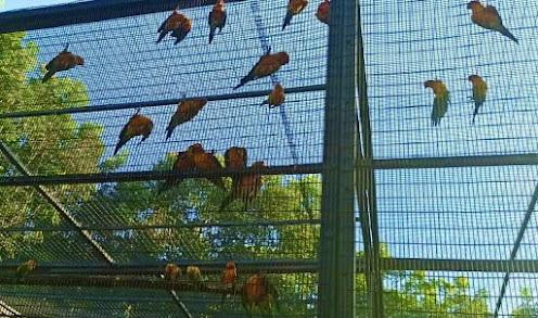 Birds Park / Birds Research Center Hambantota
