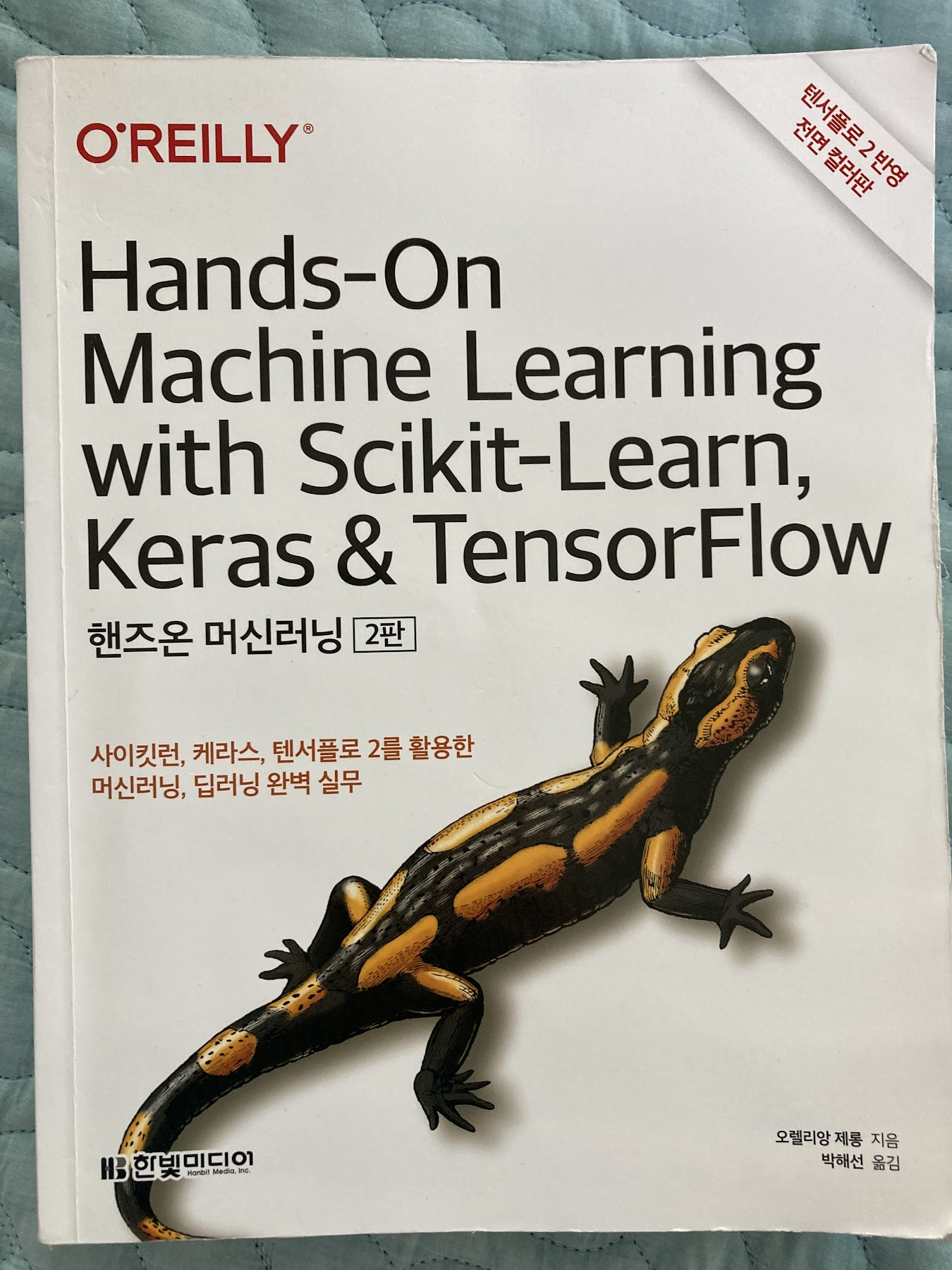 hands_on_machine_learning-01