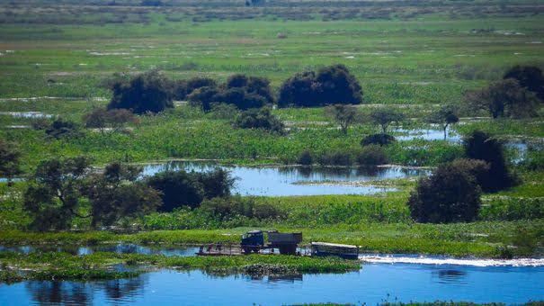 Parque Nacional do Pantanal Matogrossense