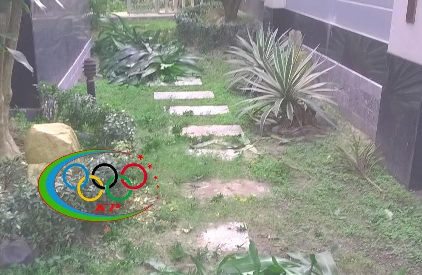 Trang trí tiểu cảnh trong căn nhà khác lạ với Thảm cỏ nhựa