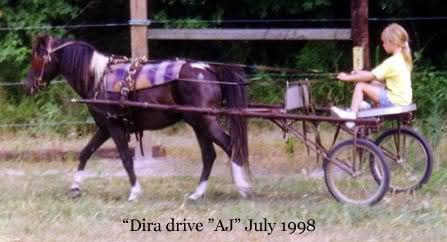 'Dira drives AJ - 1998