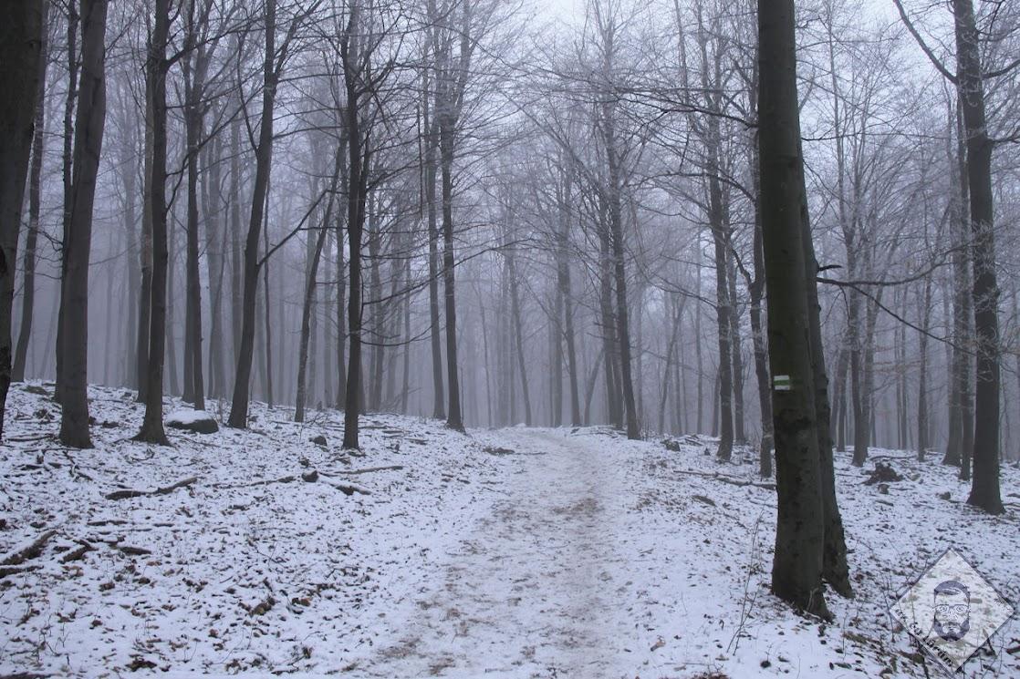 Kicsivel nagyobb köd és már hó