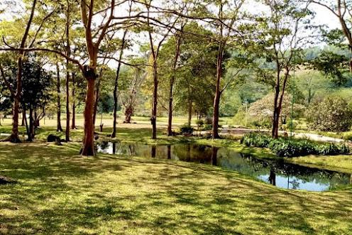 Seethawaka Botanical Garden (Seethawaka Wet Zone Botanic Gardens)