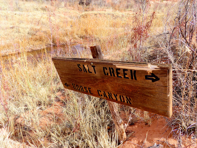Salt Creek and Horse Canyon junction sign