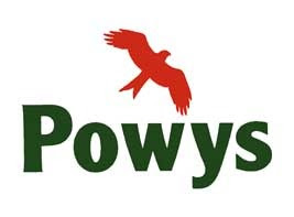 Powys repairs budget halved
