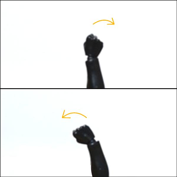 ボディくん:手首