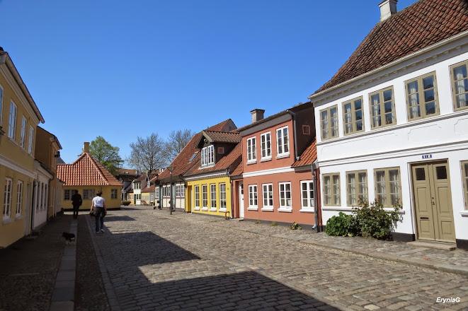 patrz: Odense iFredericia